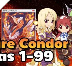 วิธีเก็บเลเวลด้วย Fire Condor Card ที่เปลี่ยนจาก Hard Mode เป็น Easy Mode สำหรับสายเวท Wizard, Sage, Super Novice